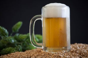 Pilsner vs Lager – What's The Difference Between Pilsner and Lager?