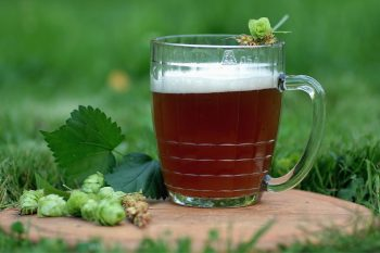 All Grain Brewing: Complete How-To Homebrew All Grain Beer
