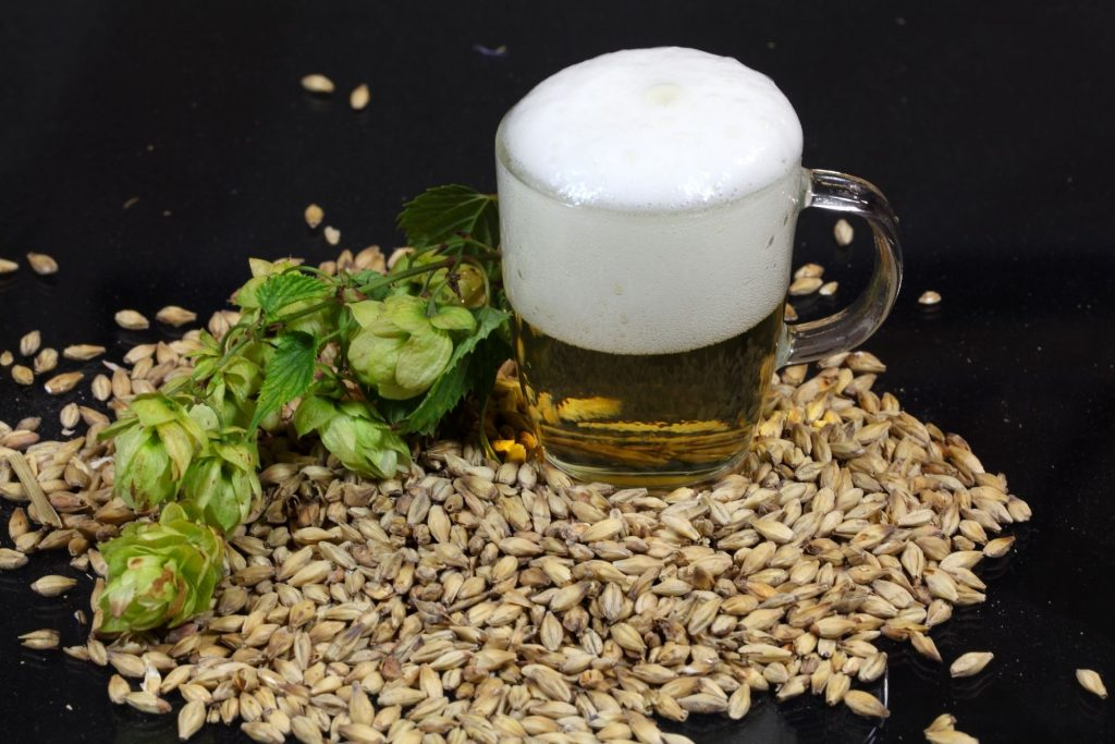 Dry Hopping Your Beer Like a Pro_Sound Brewery