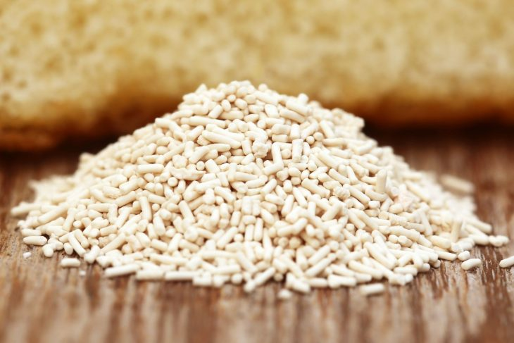 Brewer's Yeast vs Baker's Yeast For Bread_Sound Brewery