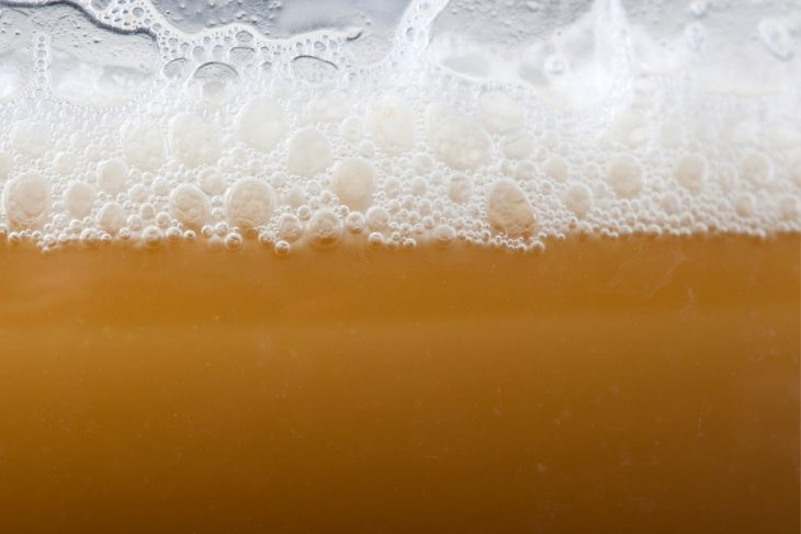 How to Make a Yeast Starter For Your Homebrew_Sound Brewery