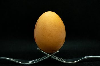 Let's Talk About Egg in Beer