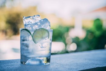 Answered: Does Gin Freeze? Can You Freeze Gin? Freezing Point Of Gin In A Freezer…